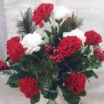 Festive Christmas Flowering Bush