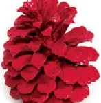 Red Painted Austrian Pinecones