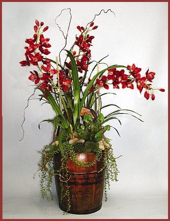 Custom Silk Plants, Trees & Orchids