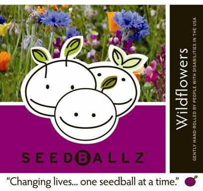 SeedBallz - Flower Seeds