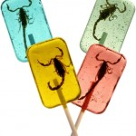 Novelty Scorpion Suckers