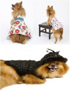Adorable Pet Clothing