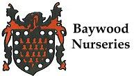 Baywood Nurseries
