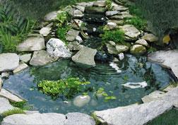 Bird Pond With 3 Tier Cascade