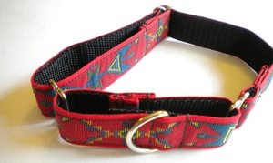Red Southwest Martingale Collar