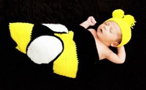 Bumblebee Cocoon