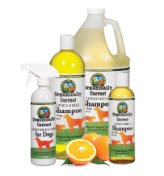 Citrus Shampoo & Spray