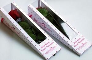Mini Scented Stem Rose