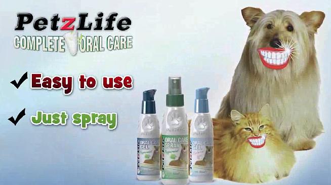Pet Oral Care