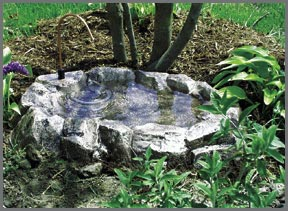 carry the building blocks of backyard beauty with clear pond