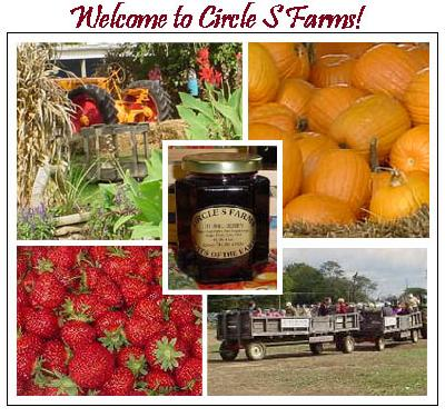 Farm Fresh Gourmet Foods From Circle S Farms