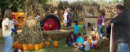 Visitors Enjoying Harvest Time at Circle S Farms