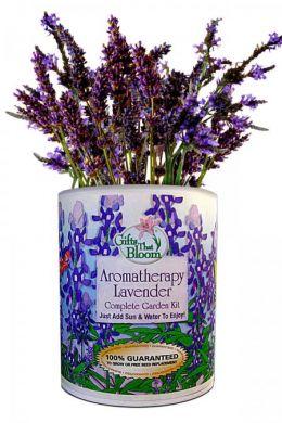 Aromatherapy Lavender Garden Grocan