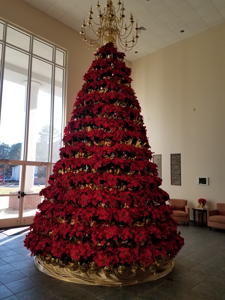 Silk Poinsettia Display