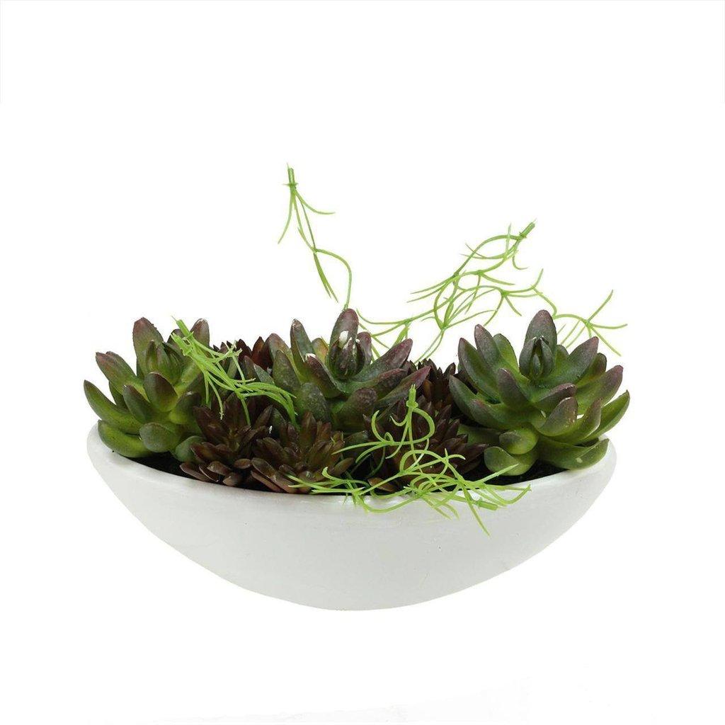 Artificial Mixed Succulent Arrangement