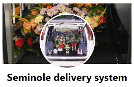Seminole Delivery System Website