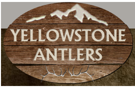 Visit YellowstoneAntlers.com